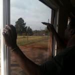 Window Tinting